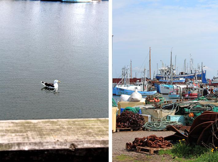 Amalie loves Denmark, Hafen von Gilleleje, Dänemark