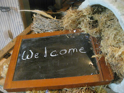 <em>Bienvenue dans ma brocante! / Welcome to my store <em></em></em>