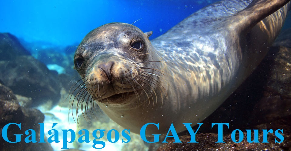 GALAPAGOS GAY CRUISES
