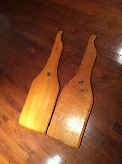 Chestnut sailing lee boards
