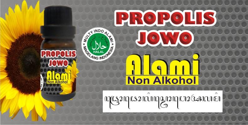 http://4.bp.blogspot.com/-nFFQ_CEhTyA/T96fEoeQH9I/AAAAAAAAAUU/NvqblNqTR8o/s1600/propolis.jpg