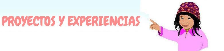 PROYECTOS Y EXPERIENCIAS