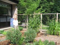 Summer Gardeners