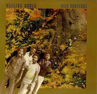 The Wailing Souls - Wild Suspense