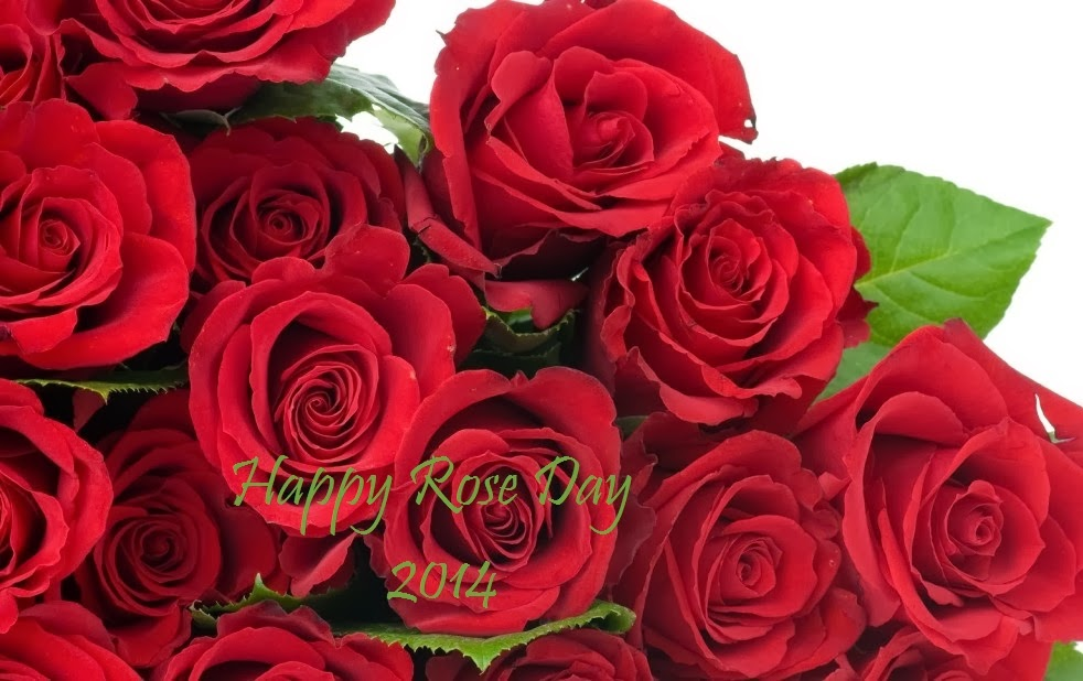 happy rose day 2014 images i love you
