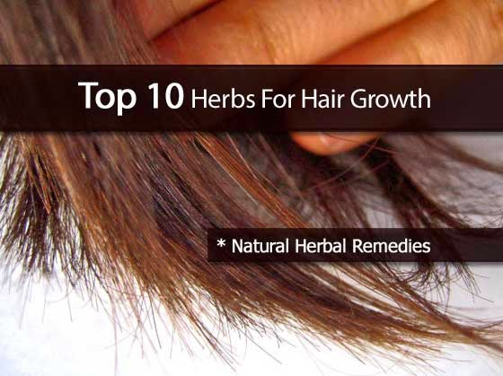 Top 10 Herbs For Hair Growth