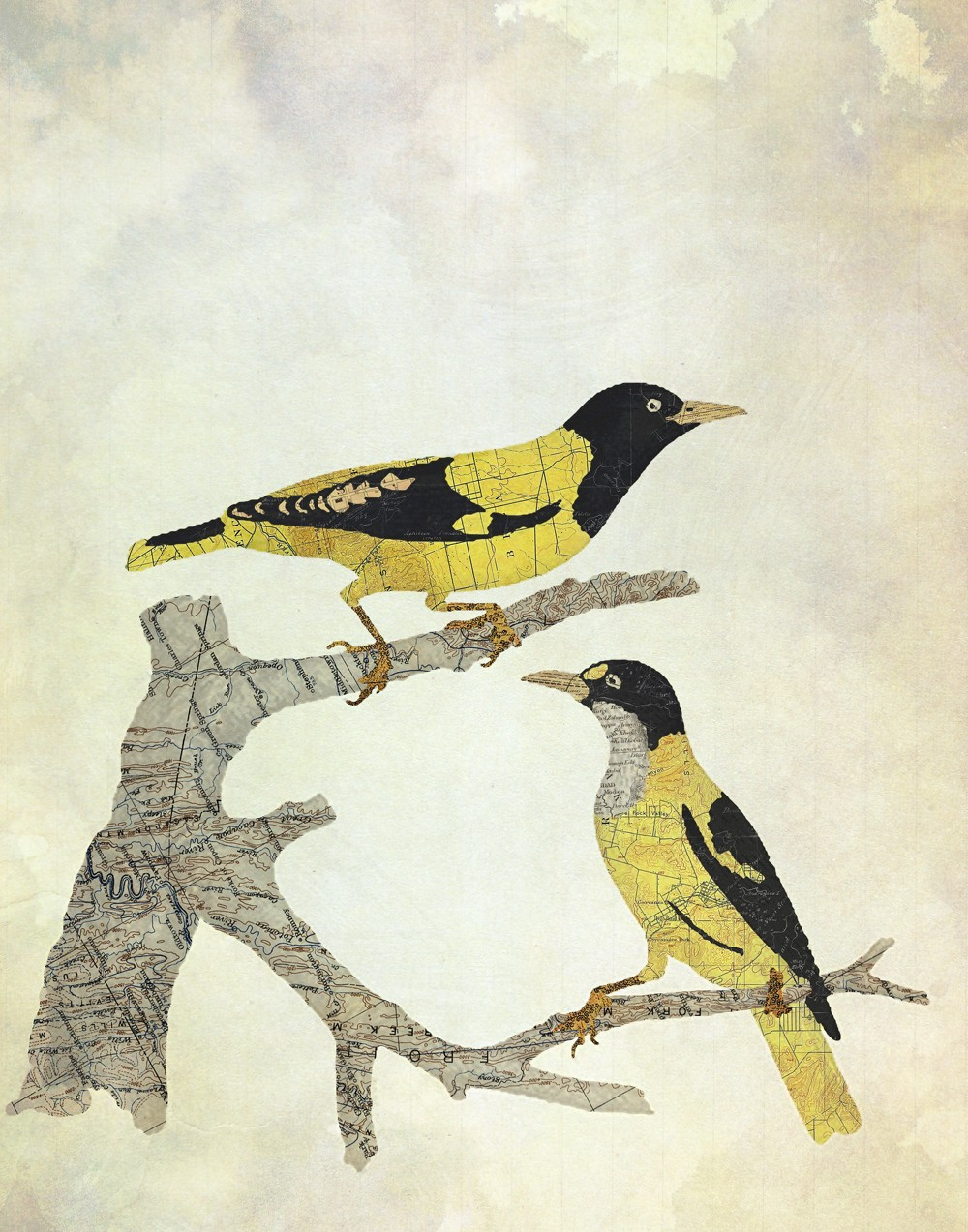 06-Goldfinches-Jason-LaFerrera-Cartography-Shaped-to-make-Map-Animals-www-designstack-co