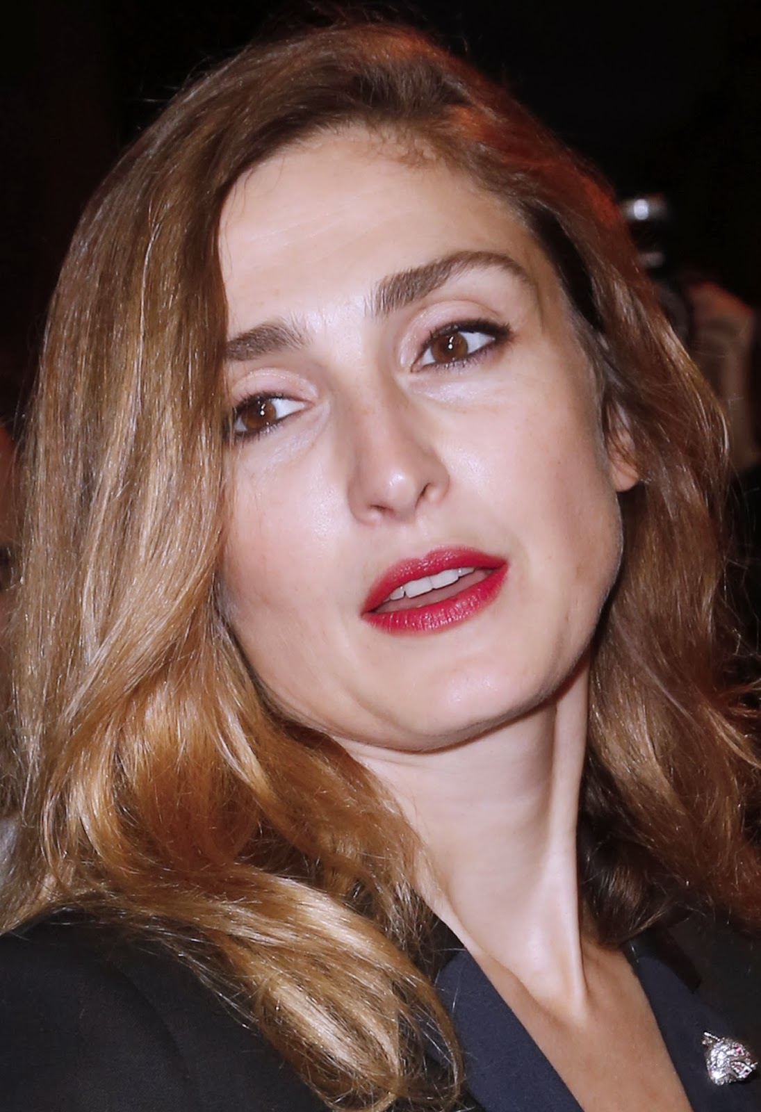 Actress, Cannes, Confirm, Figurines, First Lady, France, Francois Hollande, Hollywood, Hospital, Julie Gayet, Love Affair, News, Photo, Politician, Politics, President, Press Conference, Showbiz, Valerie Trierweiler,