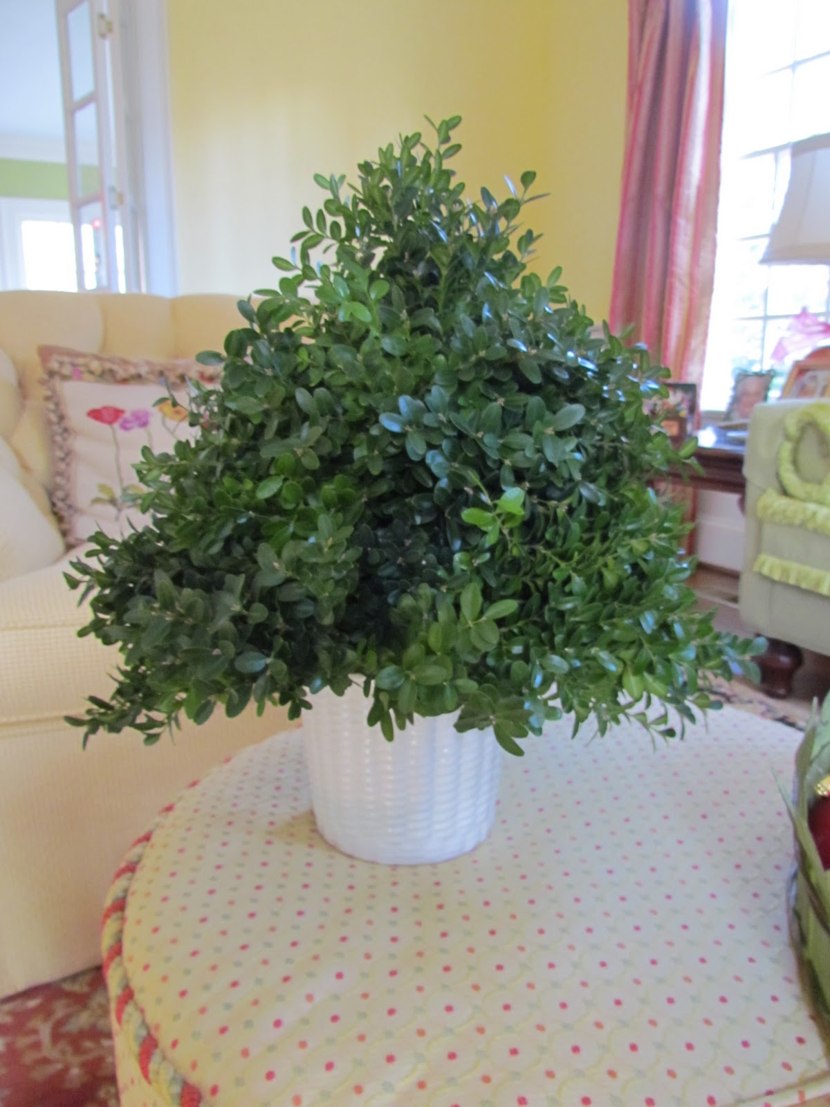 boxwood christmas craft