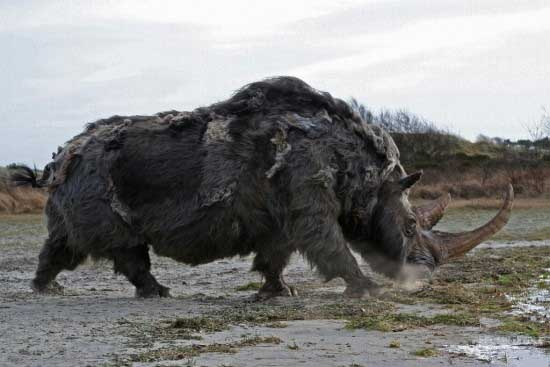 amazing-extinct-animals-resurrected-by-cloning-woolly-rhinoceros