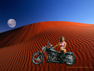 Harley Davidson Bikini Babes Wallpapers Bikes Beautiful Babe in Moon Light Wallpaper