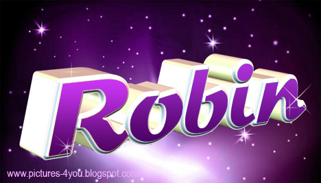 Robin 3D Name