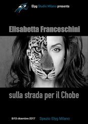 """""""Sulla strada per il Chobe"""". Milano 2017"""
