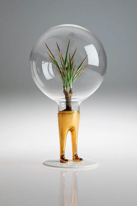 A las plantas le crecen piernas en estos terrarios surrealista