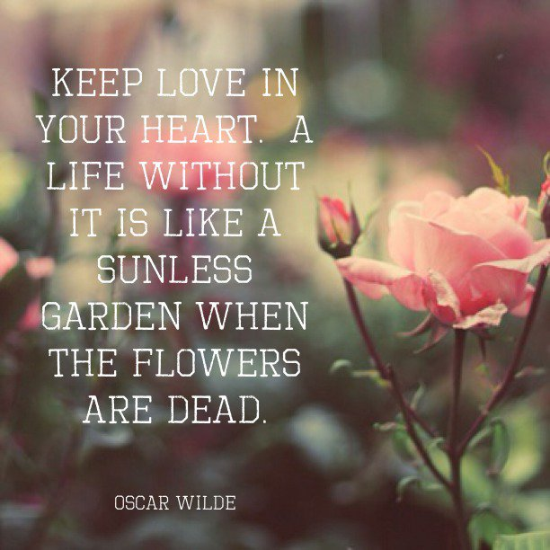 Garden Love Quotes Fair Keep Love In Your Hearta Life Without It Is Like A Sunless