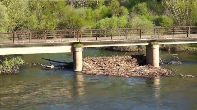 río Órbigo, perteneciente a la Confederación Hidrográfica del Duero, a su paso por Maire de Castroponce (Zamora).