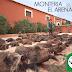 NUEVA MONTERIA EN EL ARENAL (22-11-2014) ORGANIZADA POR GESCAZA