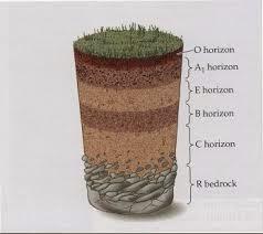 Sifat Fisika Kimia Biologi dan Profil Tanah