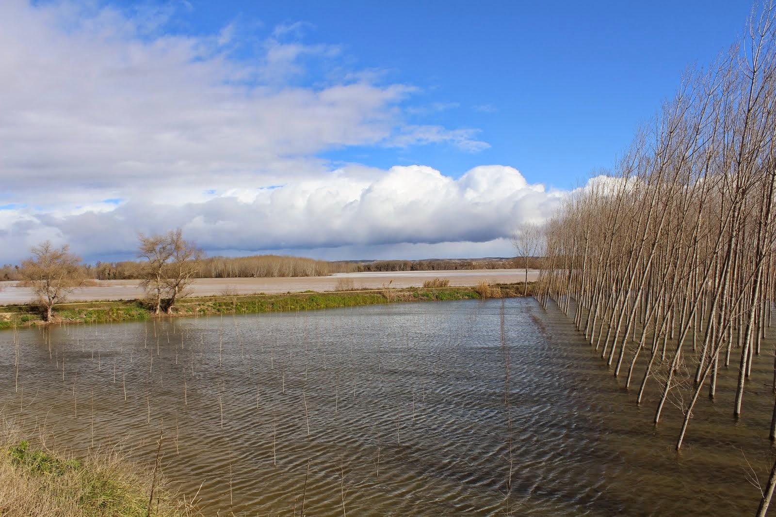Crecida del Ebro en Alfaro