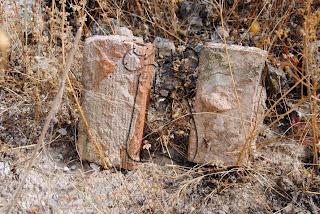 Ladrillo hueco doble y macizo (derecha) de 14/TREP-010