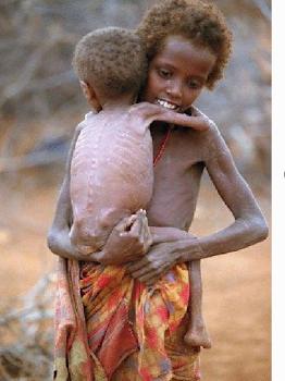 Combate à fome