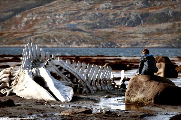 Leviathan (Andréi Zvyagintsev)
