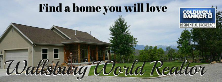 Wallsburg World Realtor