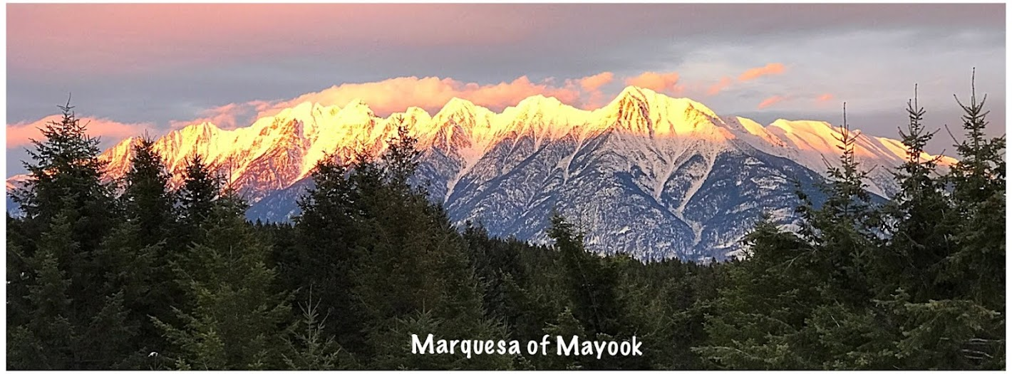Marquesa of Mayook