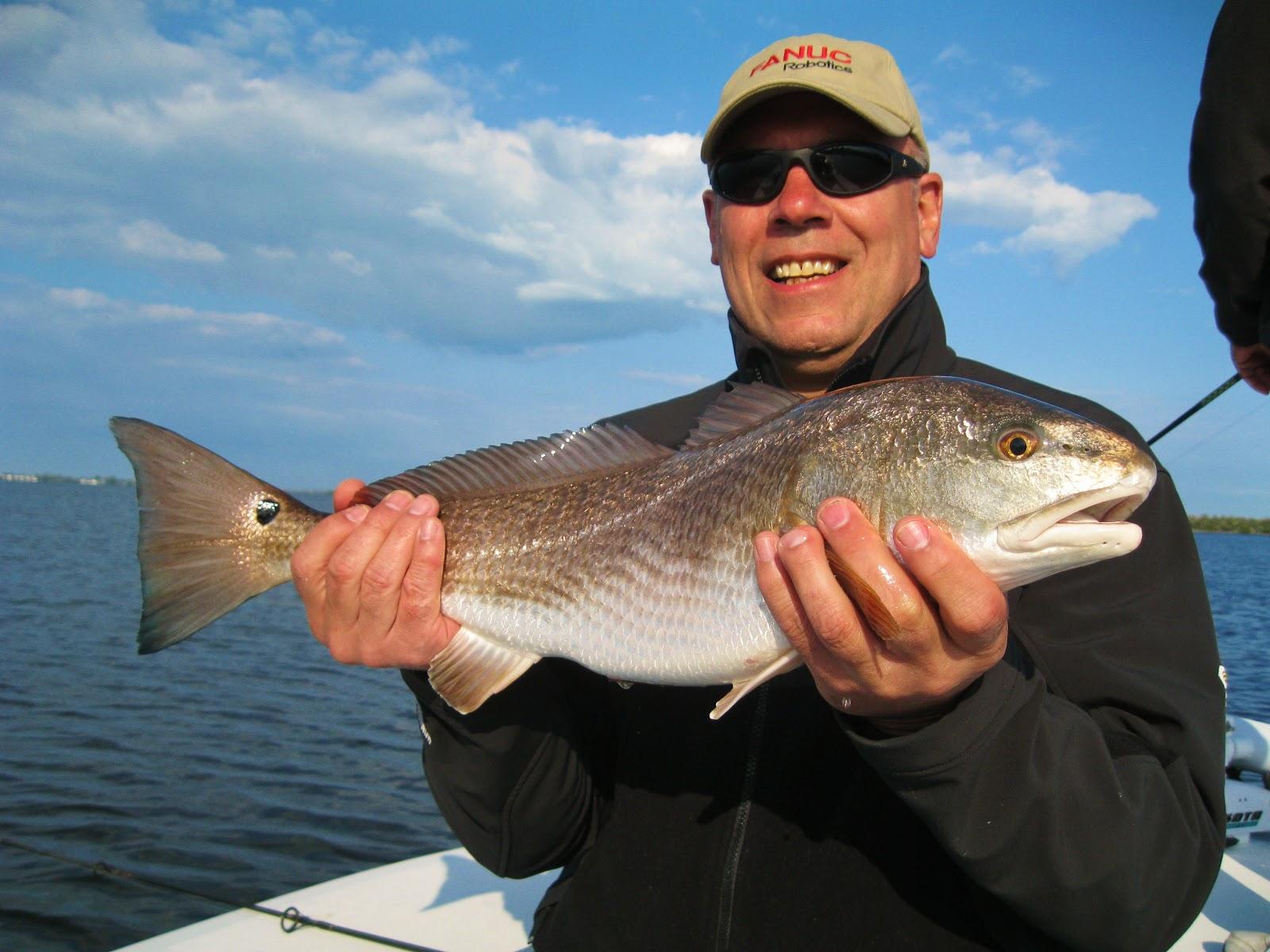 The pine island angler pine island fishing report water for Pine island fishing charters