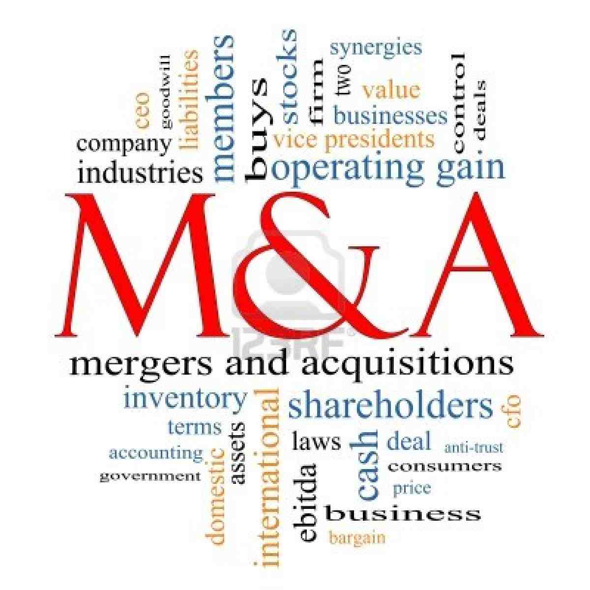 management accounting system integration in corporate mergers a case study The key difference between cm and am is that the former does not manage the financial accounting  a configuration management system  case study funded by the.