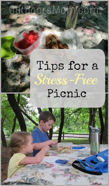 Tips for a Stress-Free Picnic