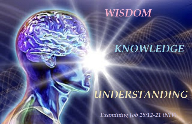 an understanding of consciousness Understanding the 3 states of consciousness: 3d, 4d, and 5d there is no doubt that other dimensions or realms exist in this universe you may have seen them yourself through your dreams or through ast.