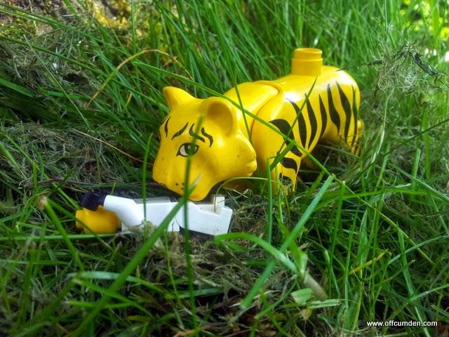 Tiger kills man