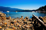 DEEP COVE