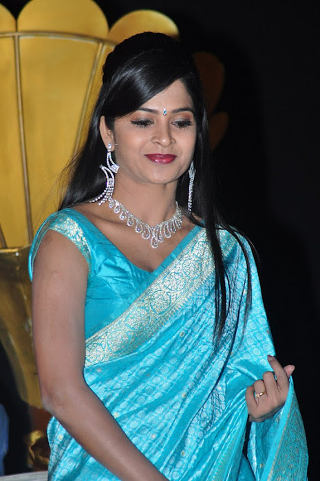 madhumitha transparent silk saree actress pics