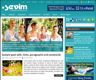 Sevim-Blogger-Template