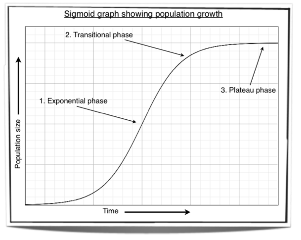 write an essay on population growth curve Write my essay we are the most trusted on the left is a typical graph for the survivorship curve of a kemp's describe the effect of the lowered _____ [use the same term as in questions 7 and 8 above] on the growth of the dolphin population is the population likely to be.