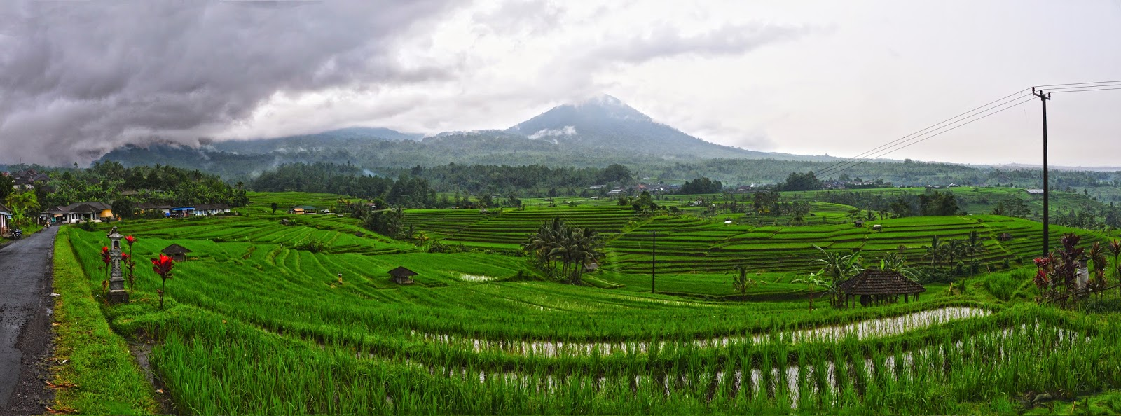Bali indonesia holiday travels jatiluwih rice terrace for What does terrace farming mean