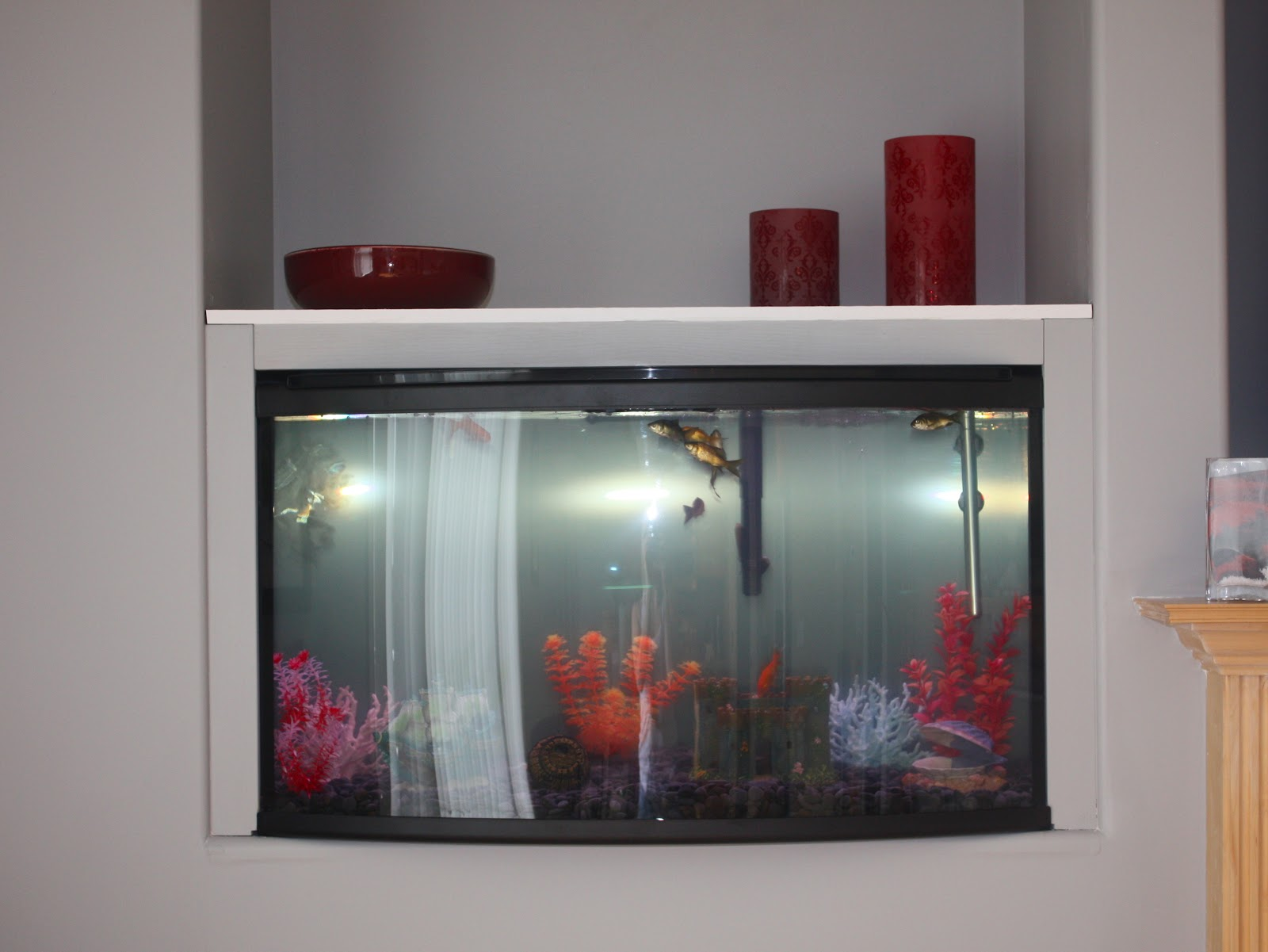 She re purposed it the living room for Fish tank fireplace
