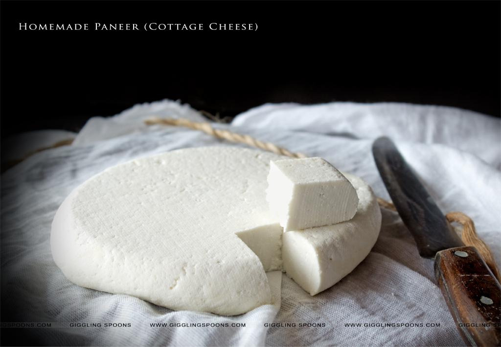 homemade paneer paneer or cottage cheese is a high protein ingredient ...