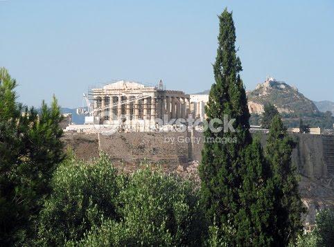 Ciprés de Thission, junto a la Akrópolis
