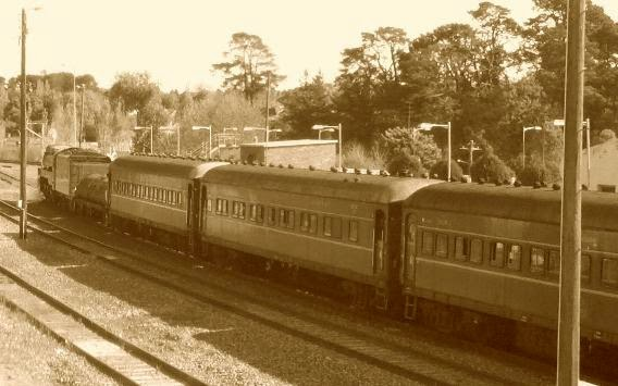 Train at Moss Vale station