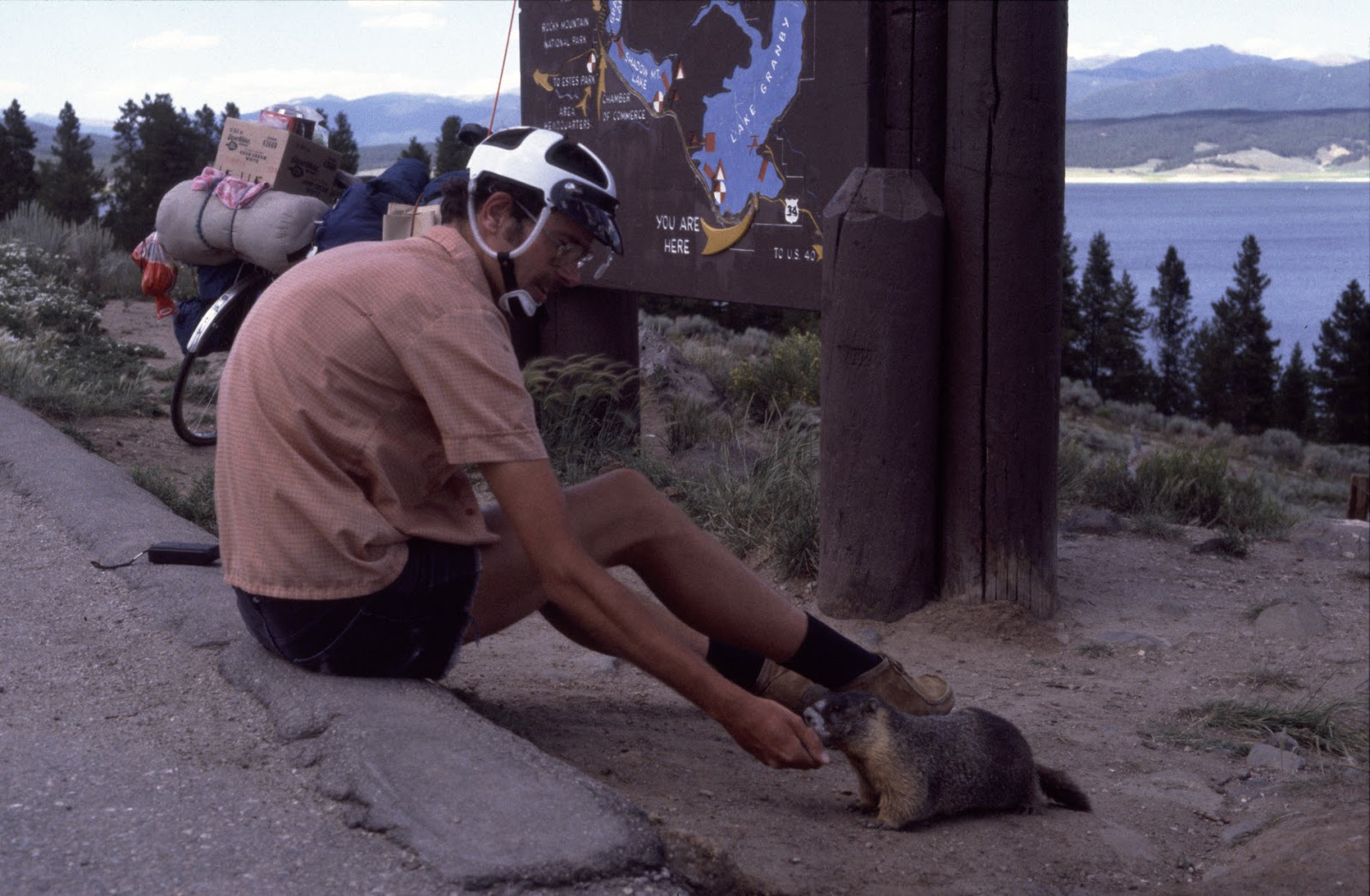 Guy feeds the marmots