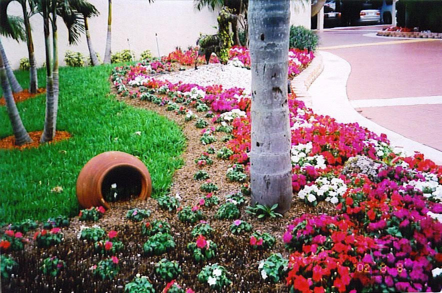 Tropical Landscaping Ideas - Landscaping Software ...