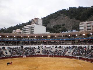 bull fight, matador, bull, toro