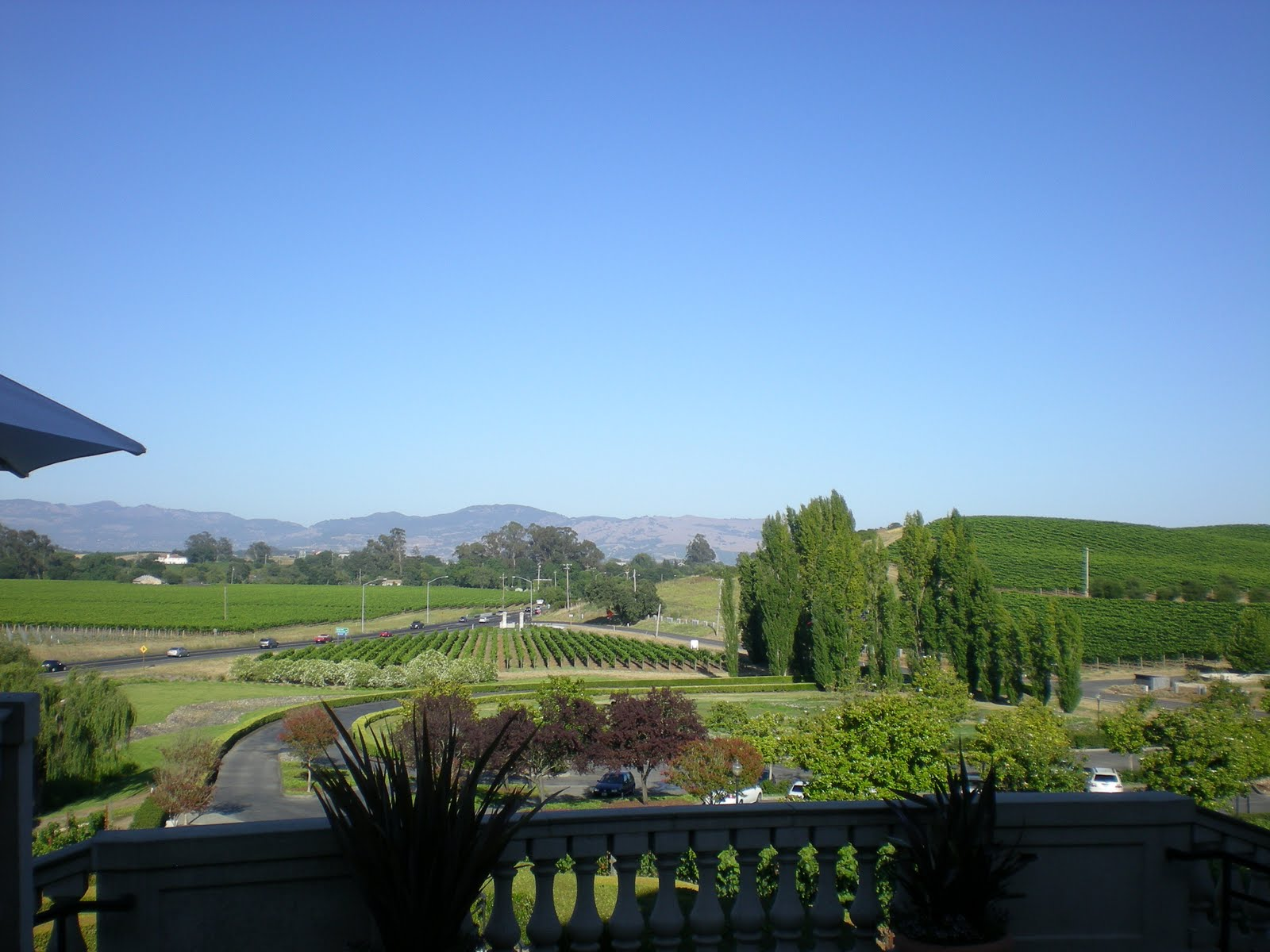 The global vacationer california road trip 4th stop for Carneros inn napa valley