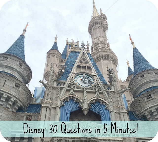 disney blog tag questions