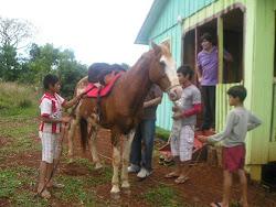 Y-apu (caballo)