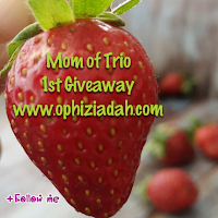 http://www.ophiziadah.com/2015/04/mom-of-trio-1st-giveaway.html?m=1