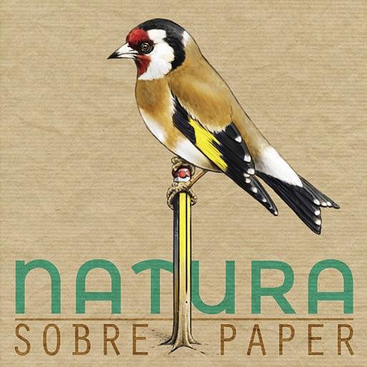 Natura sobre paper